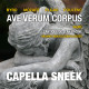 banner-ave-verum-corpus